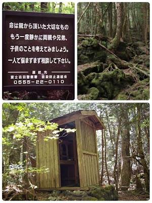 cerita misteri hutan jukai