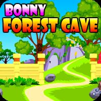 Play AvmGames Bonny Forest Cav…
