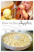 How to dry apples