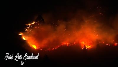 Controlado el incendio de La Palma, 6 agosto