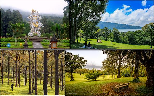 01. Kebun Raya Bedugul, Tabanan, Bali