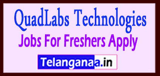 QuadLabs Technologies Recruitment 2017 Jobs For Freshers Apply