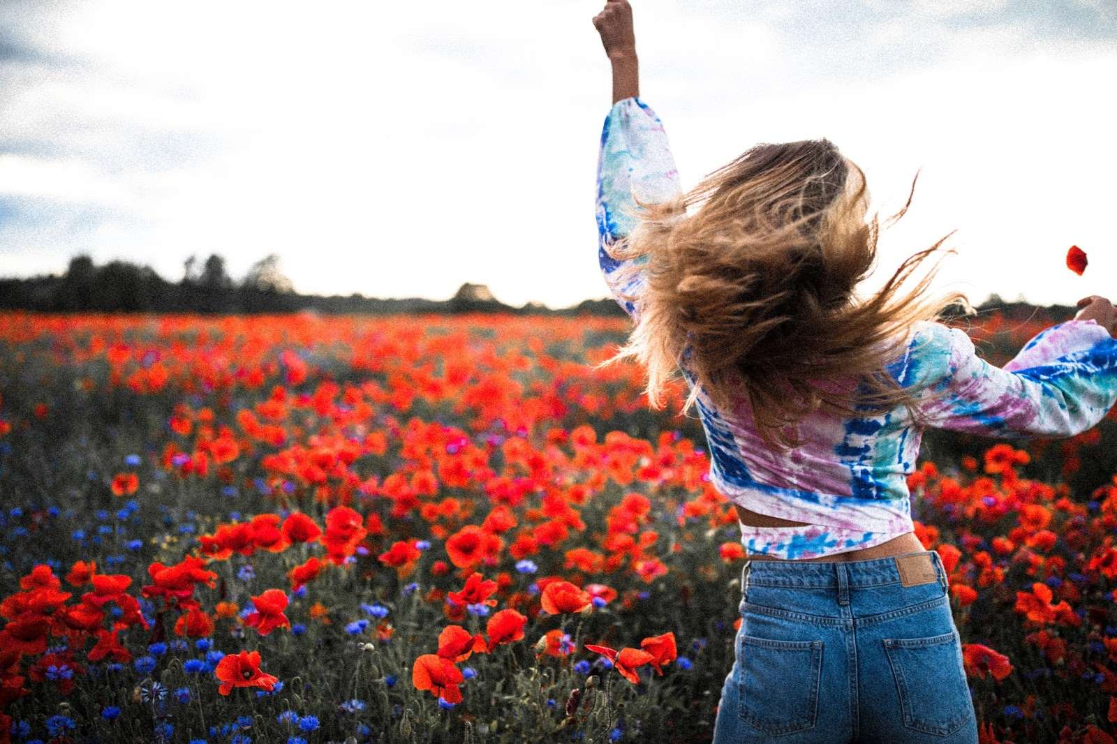 poppy field photography summer girl sunset