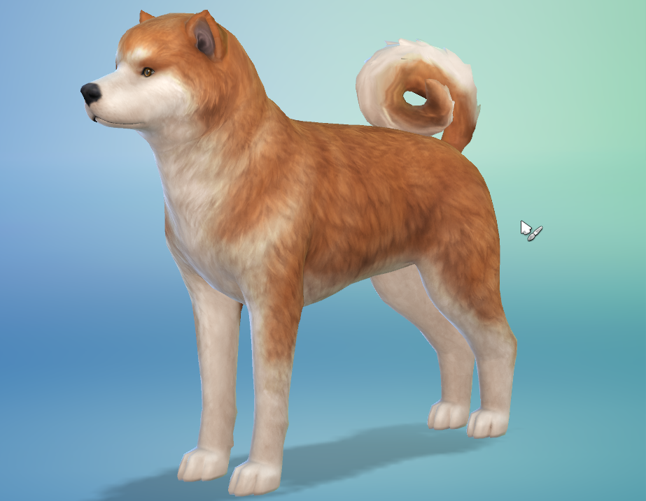Sims  Cats And Dogs Eyes Cc