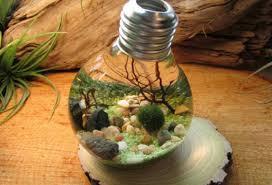 cara buat aquarium dari bolam