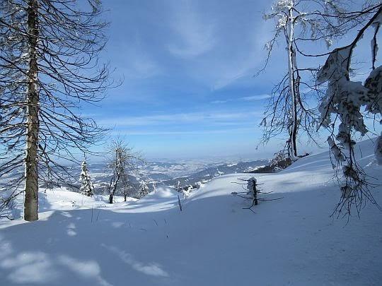 Widok na dolinę Dunajca i krainę Lachów Sądeckich.