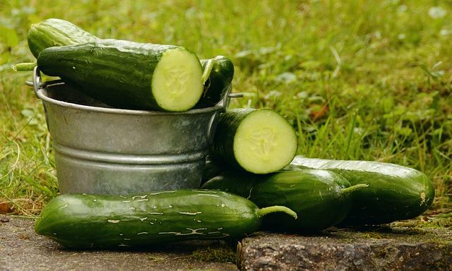 Légumes Autorisés Pour Chien