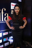Meghana Gore looks super cute in Black Dress at IIFA Utsavam Awards press meet 27th March 2017 09.JPG