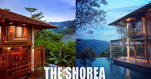 Shorea Resort