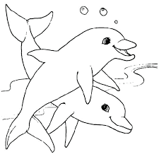 Adorable Baby Dolphin Coloring Pages