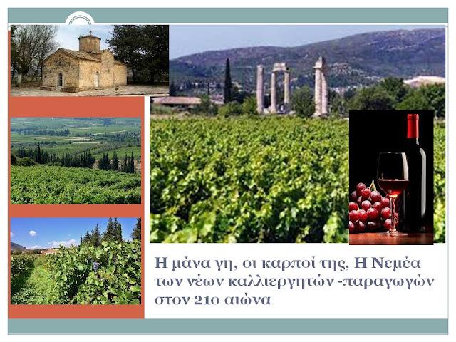 """Νεμέα: """"Πρωτεύουσα"""" του Αγιωργίτικου κρασιού στον εικοστό πρώτο αιώνα"""