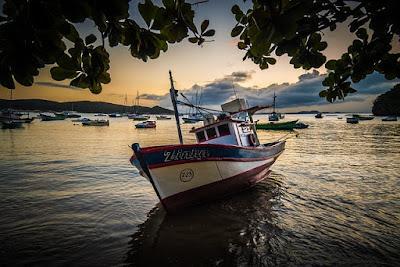 8 Peluang Usaha yang Cocok Untuk Daerah Pesisir Pantai