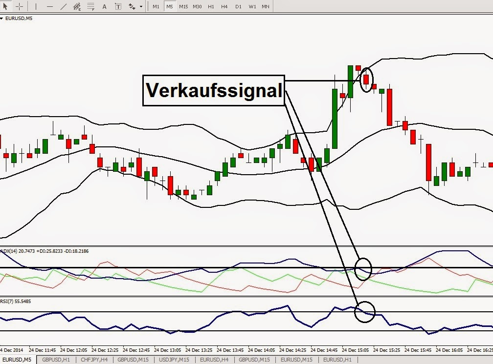 T-forex kft