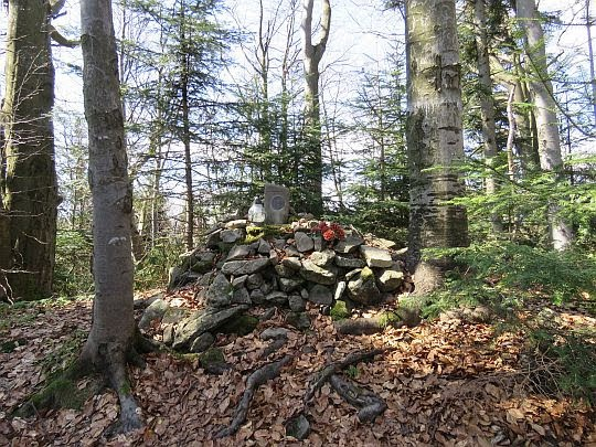 Dzwonkówka (983 m n.p.m.).