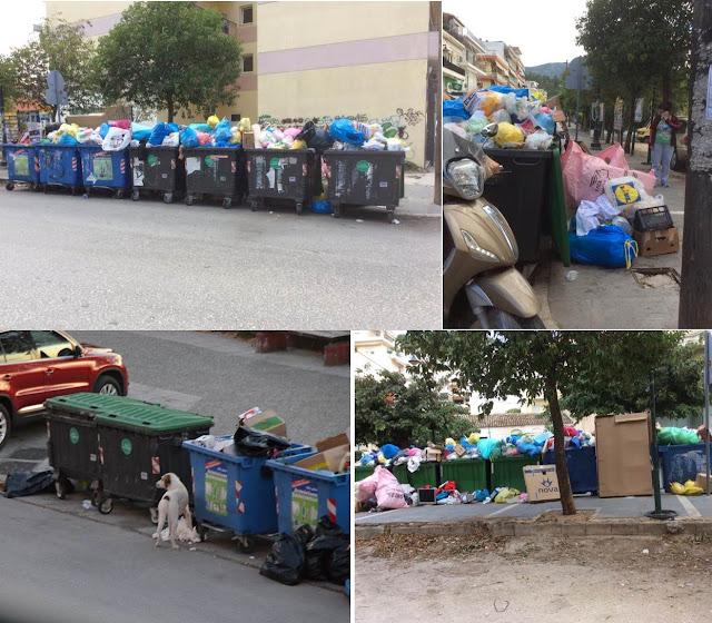 Ηγουμενίτσα: Αναγνώστης για την κατάσταση με τα σκουπίδια (+ΦΩΤΟ)