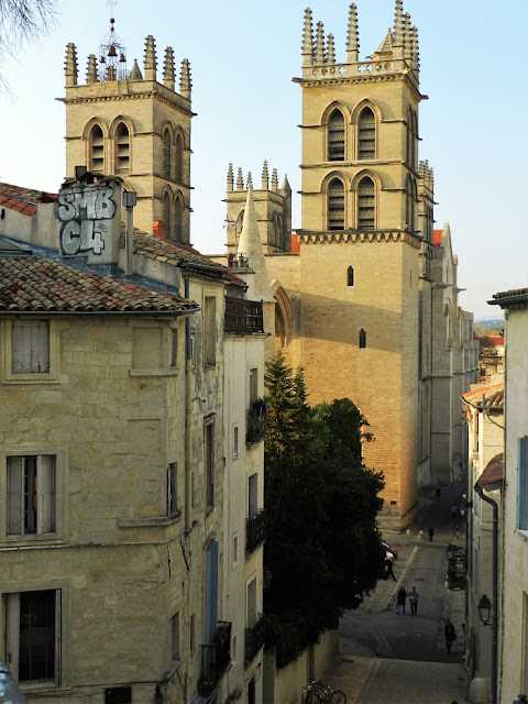 cattedrale montpellier francia