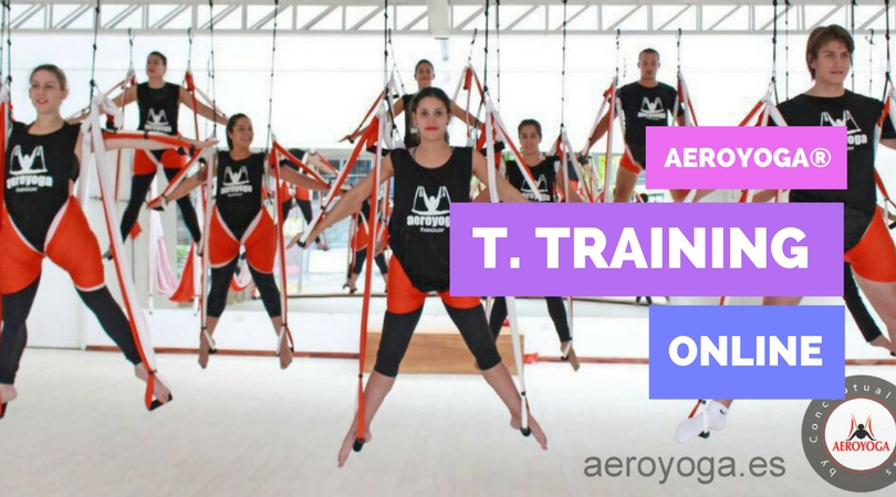 Yoga Swing The 5 Most Frequently Asked Questions About The Online Aeroyoga Teachers Training Yoga Creativo