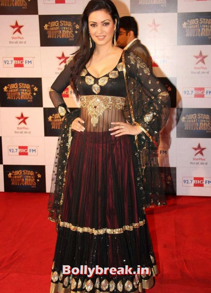 Sana Khan, Tv babes Sizzle on Big Star Entertainment Awards 2013 Red Carpet