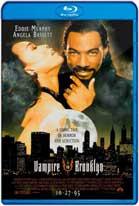 Un Vampiro Suelto en Brooklyn (1995) HD 720p Subtitulada