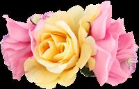 Flor rosa png