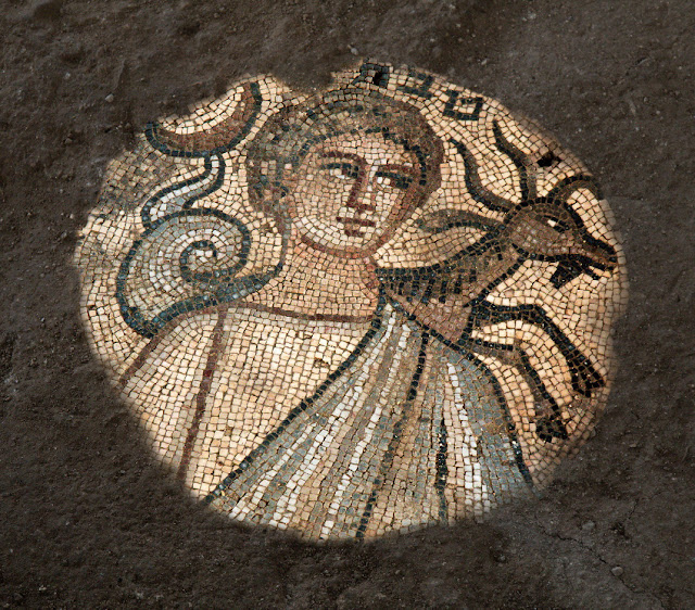 Excavations of Late Roman synagogue at Huqoq continue to yield stunning mosaics