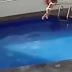 Vídeo: Câmera flagra homem atirando enteada de 3 anos em piscina, criança morreu afogada