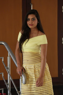 Shipra gaur in V Neck short Yellow Dress ~  053.JPG