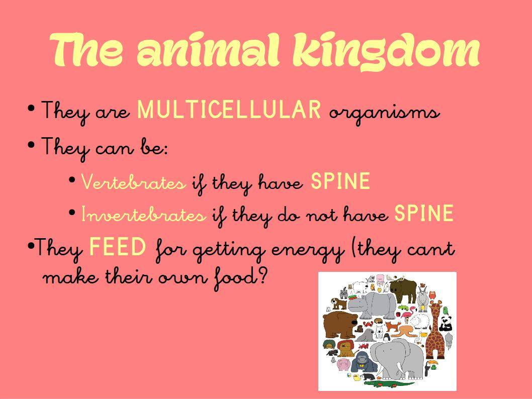 Milaenglish Blog The 5 Kingdoms