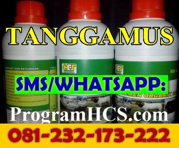 Jual SOC HCS Tanggamus
