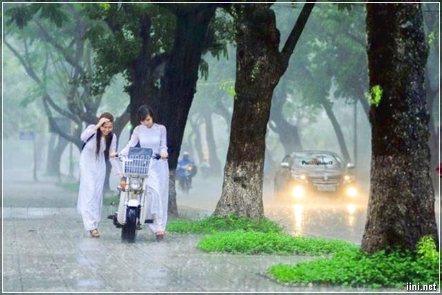 nữ sinh Huế đi học dưới trời mưa