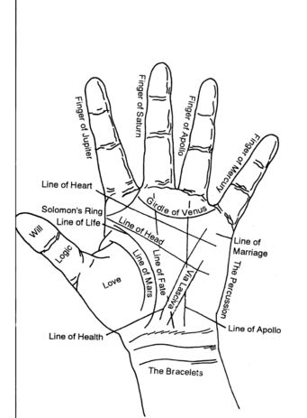Diagram Of Hand Palmistry