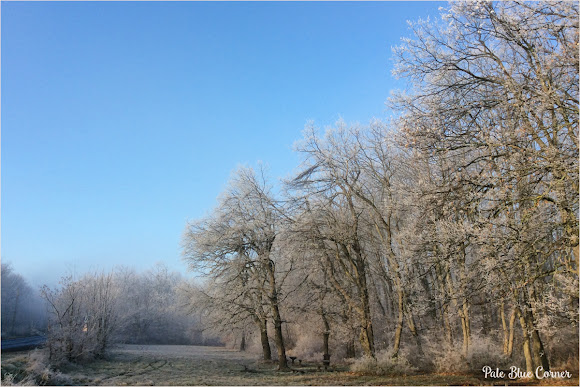 Winter, Photo