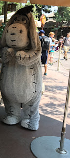 Eeyore Critter Country Disneyland