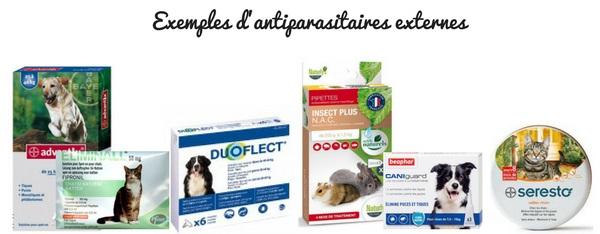 Solution contre les puces et tiques chien et chat