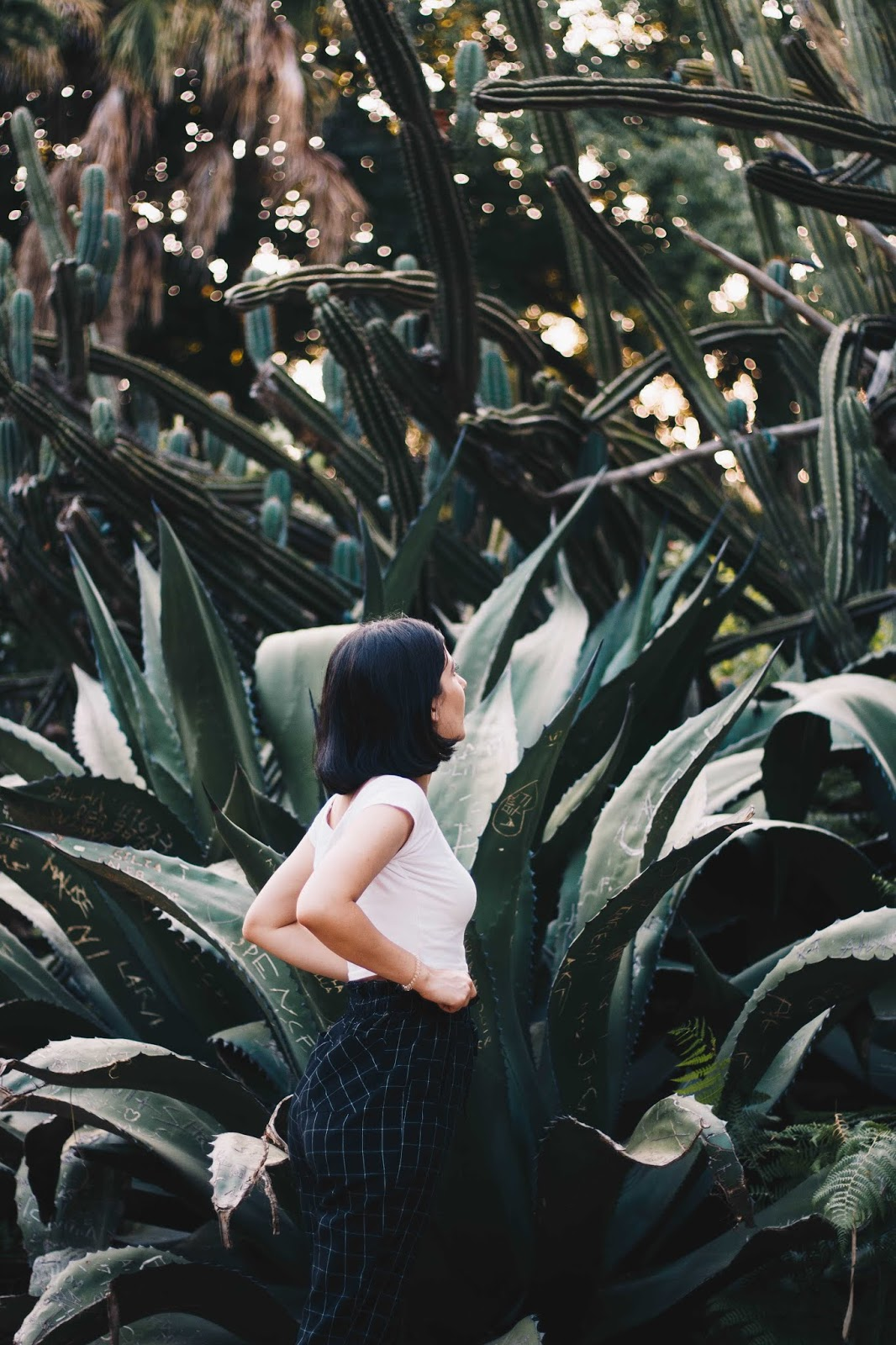 On the last day of August, after the wonderful picnic with Embelleze, Daniela (Dezassete) did magic again. The scenery is part of Jardim da Estrela in Lisbon, and it could not be more perfect. The aesthetic of the cactus was calling for us, and how cool that it matched perfectly with my very basic and minimalist outfit? Click to see more photos!