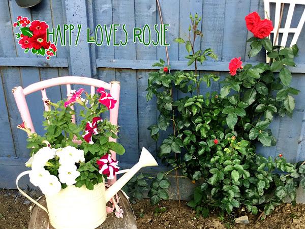 Happy's Garden Update Part 3