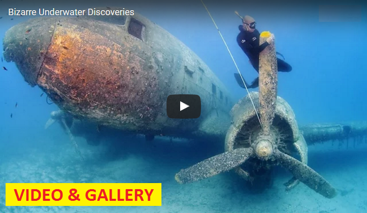 VIDEO & GALLERY: 13 Bizarre Underwater Discoveries