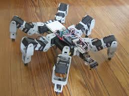 Robot Laba Laba Ini Menarik Perhatian Kami