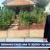 Παράνομοι οι λαχανόκηποι στις ΗΠΑ. Οικογένεια διατάχθηκε να καταστρέψει κήπο της!