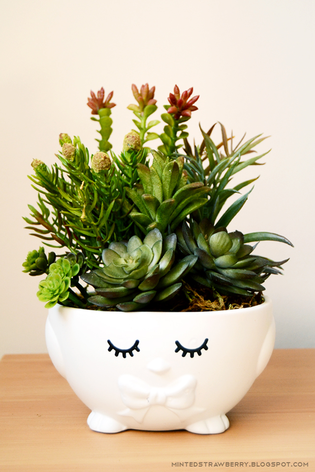 succulent plant pot chia head