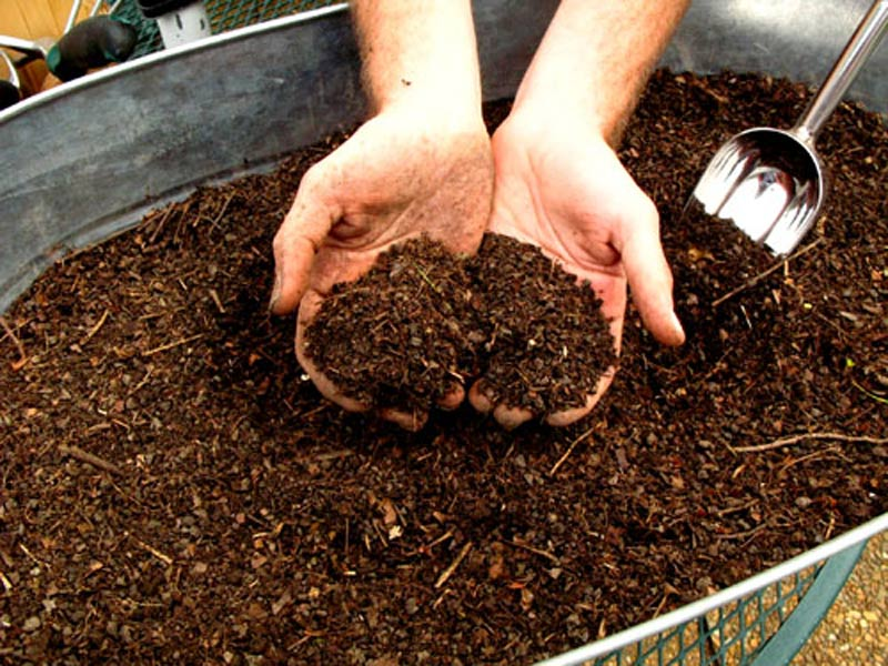 C mo hacer compost en casa ecosiglos for Abono para las plantas de jardin