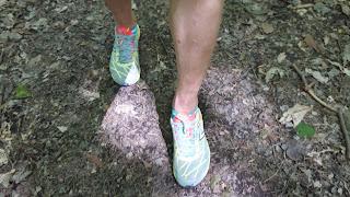 Chaussures de course, New Balance, sentier en forêt