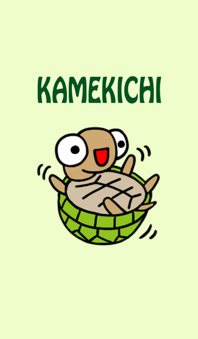 kamekichi the turtle