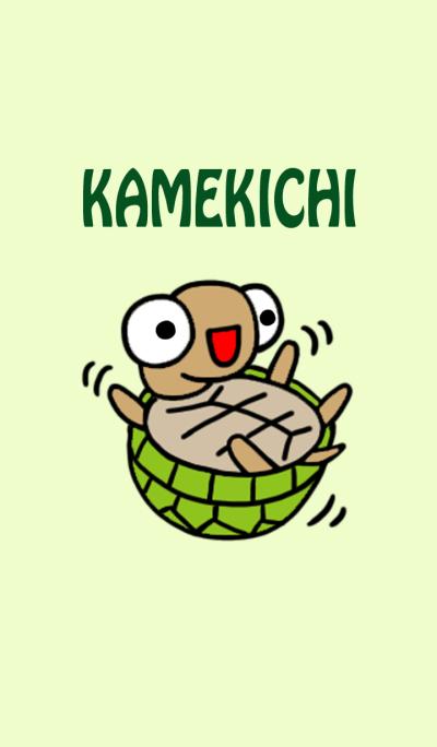 kamekichi the turtle