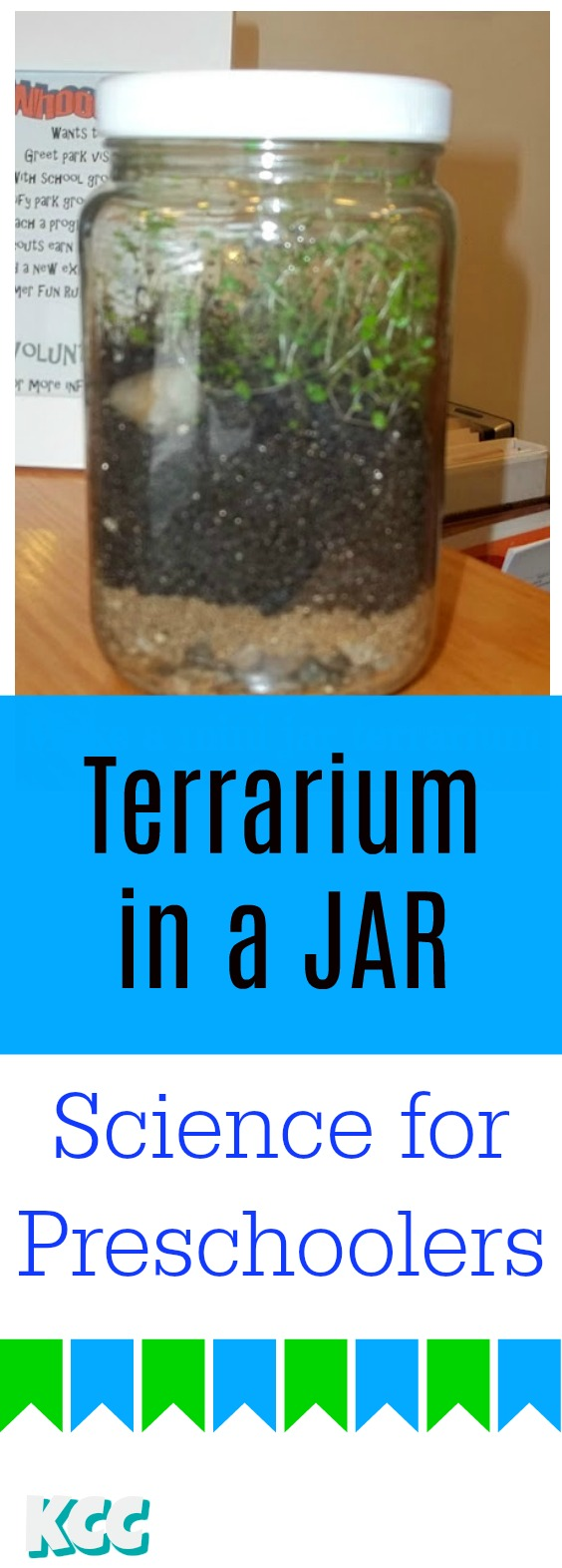 Make a Mini Terrarium in a Jar