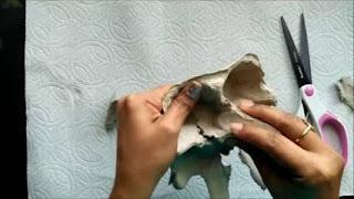 Unik Sekali Cara Membuat Bunga dari Bekas Telur atau Egg Tray yang Sederhana