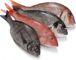 Pescado en Chile