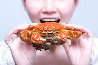 Manfaat Jika Mengkonsumsi kepiting