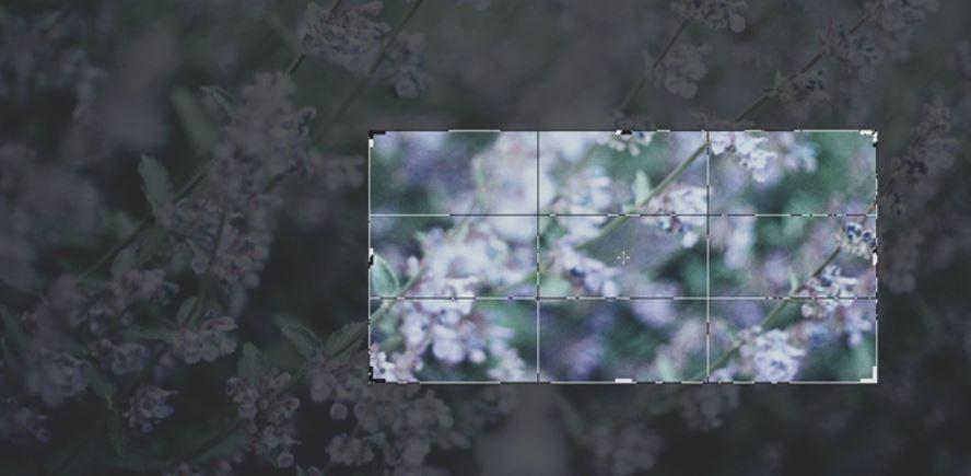3-طرق-لقص-الصور-فى-ويندوز-10-بدون-استعمال-اي-برامج