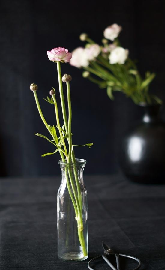 Blog + Fotografie by it's me fim.works - Ranunkeln, Glasflasche, alte Schere
